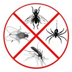 эфирные масла от комаров насекомых