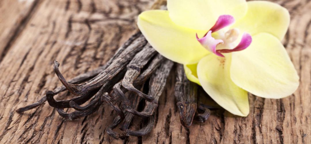 Эфирное масло ваниль